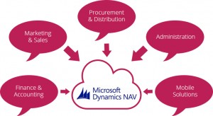 microsoft-dynamics-nav-add-on-development-services